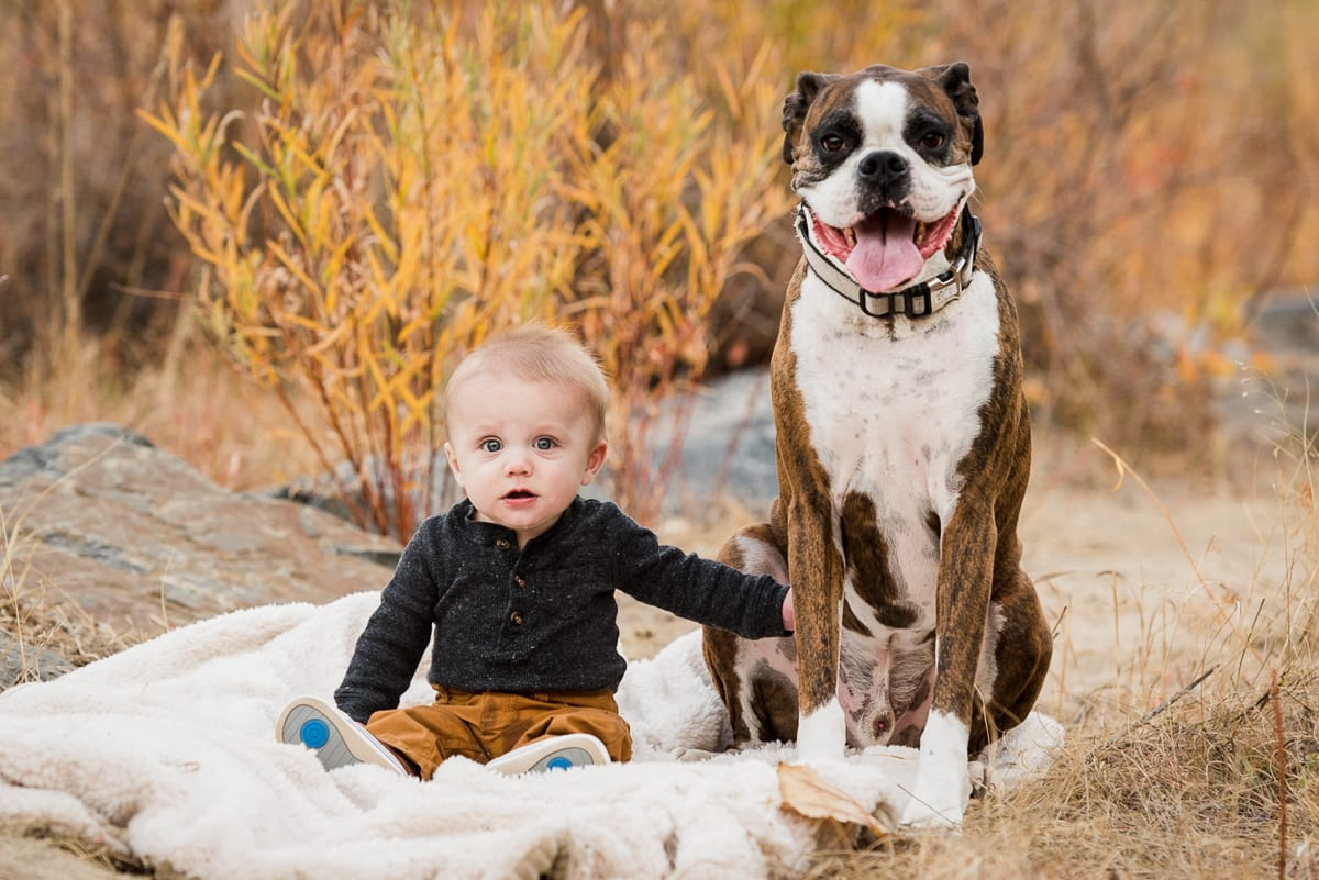 Family Portraits With Pets | Family Photography | Denver | From The Hip Photo