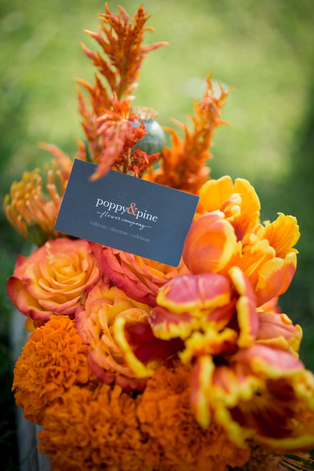 Poppy & Pine   Product Photography   Denver, CO   From The Hip Photo
