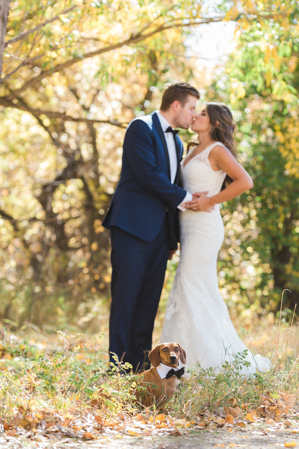 Wedding Photo with Dachshund | Pets In Human Photo Session