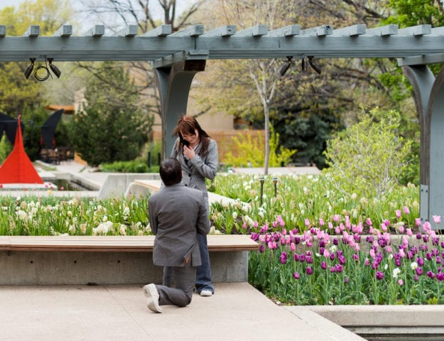 Proposal At Denver Botanic Gardens | Engagement Photography | Denver Botanical Gardens | From The Hip Photo