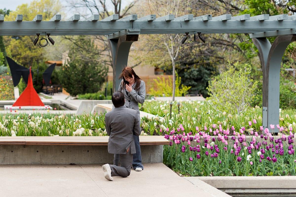 Denver Botanic Gardens proposal