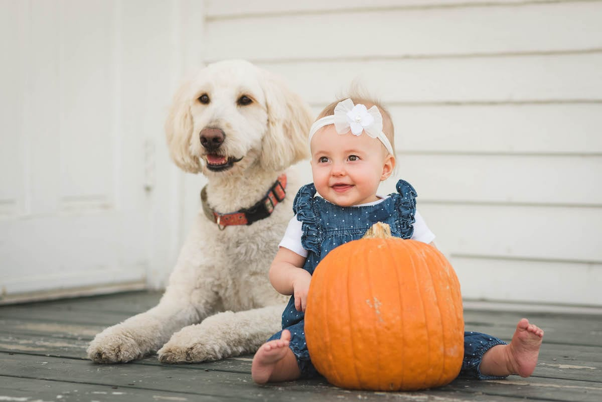 Baby with dog | Pets In Human Photo Session