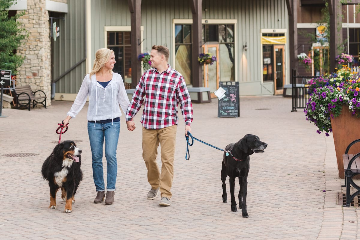 Engagement portrait with dogs | Pets In Human Photo Session