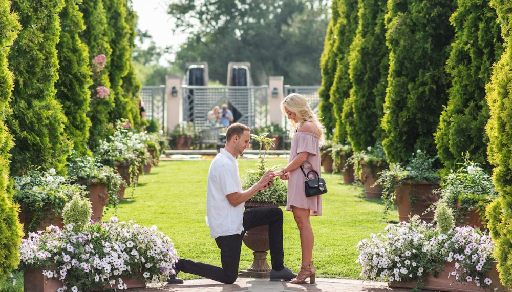 Man gets down on one knee and proposes at Botanic Gardens