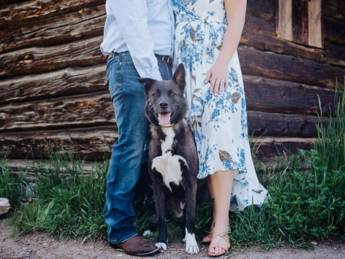 Dog Engagement Session Picture Ideas | From the Hip Photo