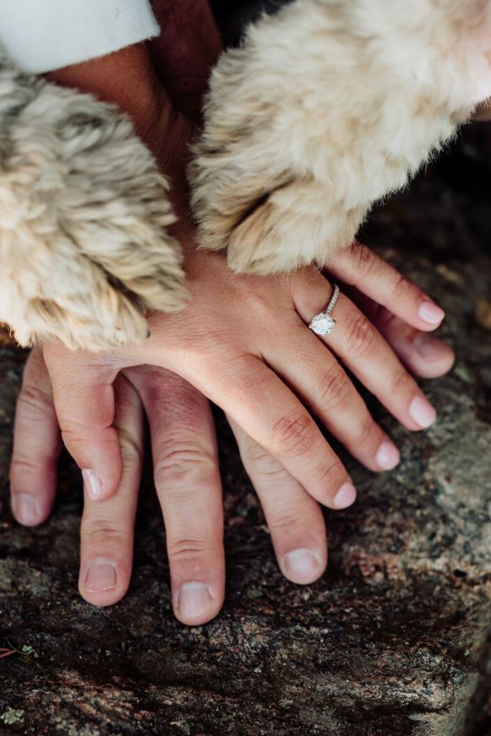 Puppy Love Engagement Session | From the Hip Photo