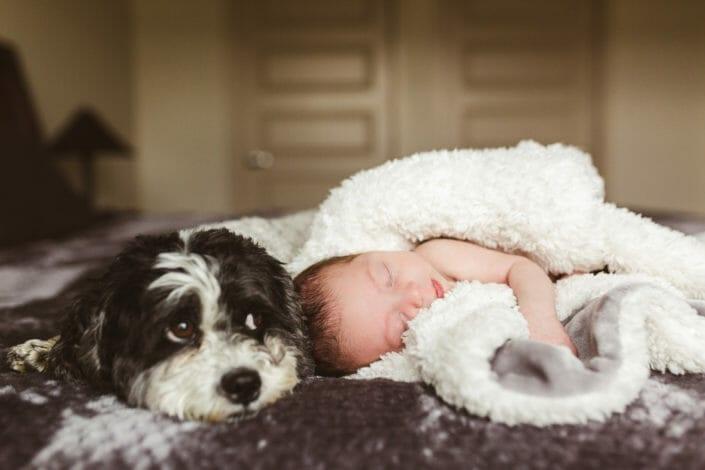 Colorado baby lifestyle photography