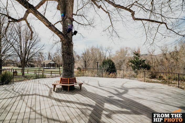 Denver Botanic Gardens Chatfield Farms   Colorado Natural Outdoor Wedding Photography Reception