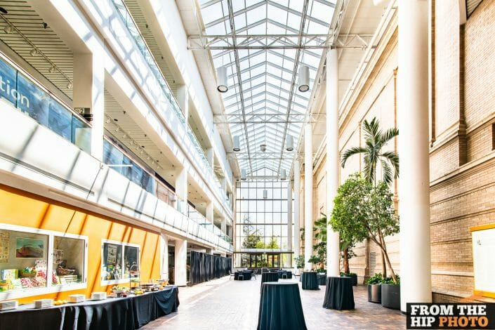 Denver Museum of Nature & Science | Colorado Indoor Event Photography Natural Lighting
