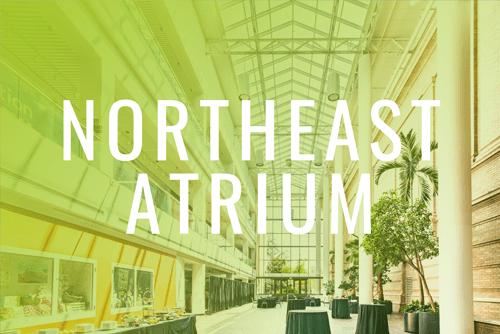 Denver Museum of Nature & Science Virtual Walkthrough Tour | North Atrium