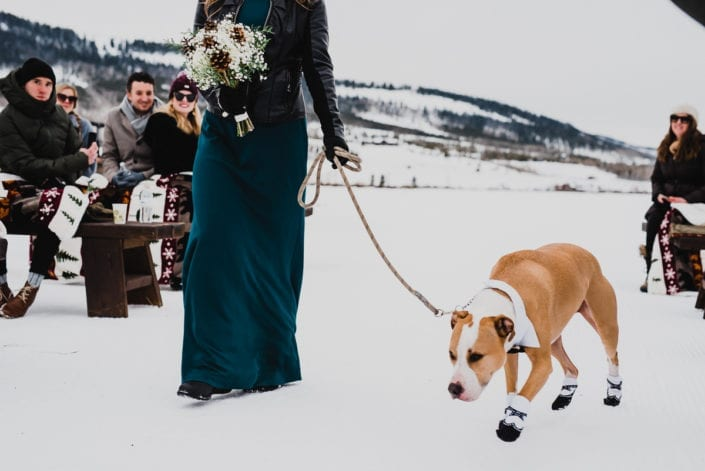 Mountain Winter Wedding Portrait   Colorado Elopement Photographer