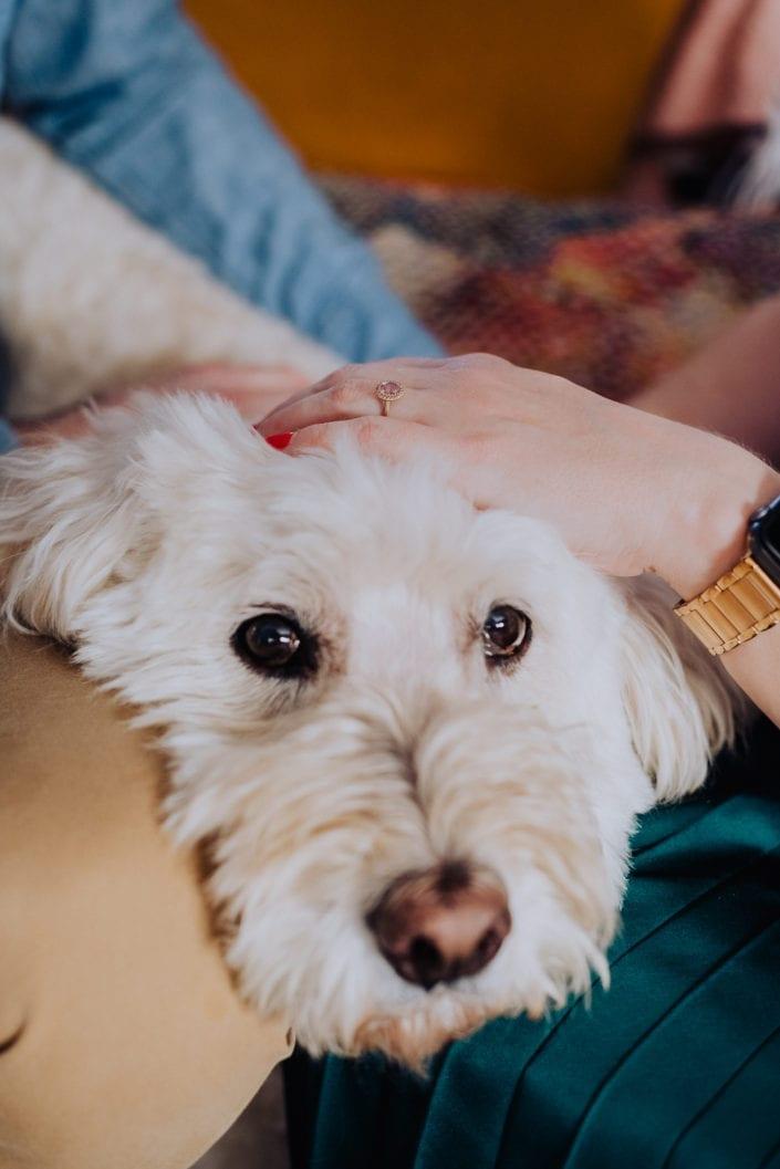 Urban Denver Home Family Portrait | Colorado Engagement Photographer